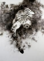 SPAZUK 'SMOKY OWL DROPPING A GRNADE' -2015-ORIGINAL 1/1