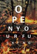 ALEX BUCKLEE 'EYE TEST - (CLIMATE CHANGE FIRE)' -2021