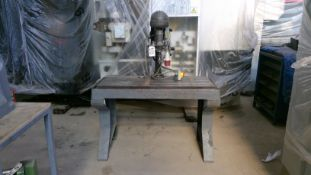 Elliot Progress Pillar Drill 3ph 340-2580 rpm
