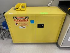 Securall Flammable Storage Cabinet