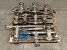 "Eagle America 2"" Assorted Ball Valves"