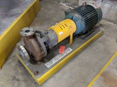 Flowserve Model MK3STD 15 HP Centrifugal Pump