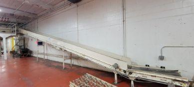Buschman Inclined Conveyor System - BULK BID FOR LOTS 1118 TO 1125