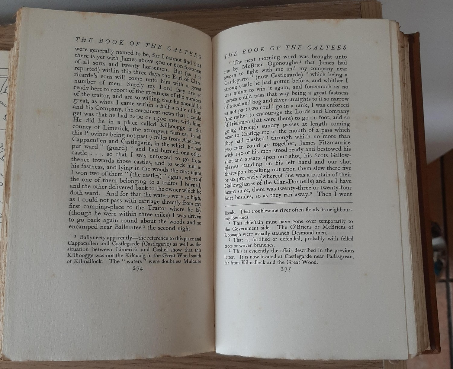 The Book of the Galtees and the Golden Vein – A Border History of Tipperary, Limerick and Cork ( - Image 5 of 5
