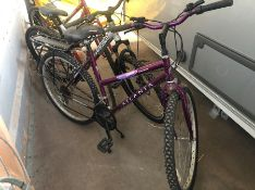 Atlanta mountain bike & stand