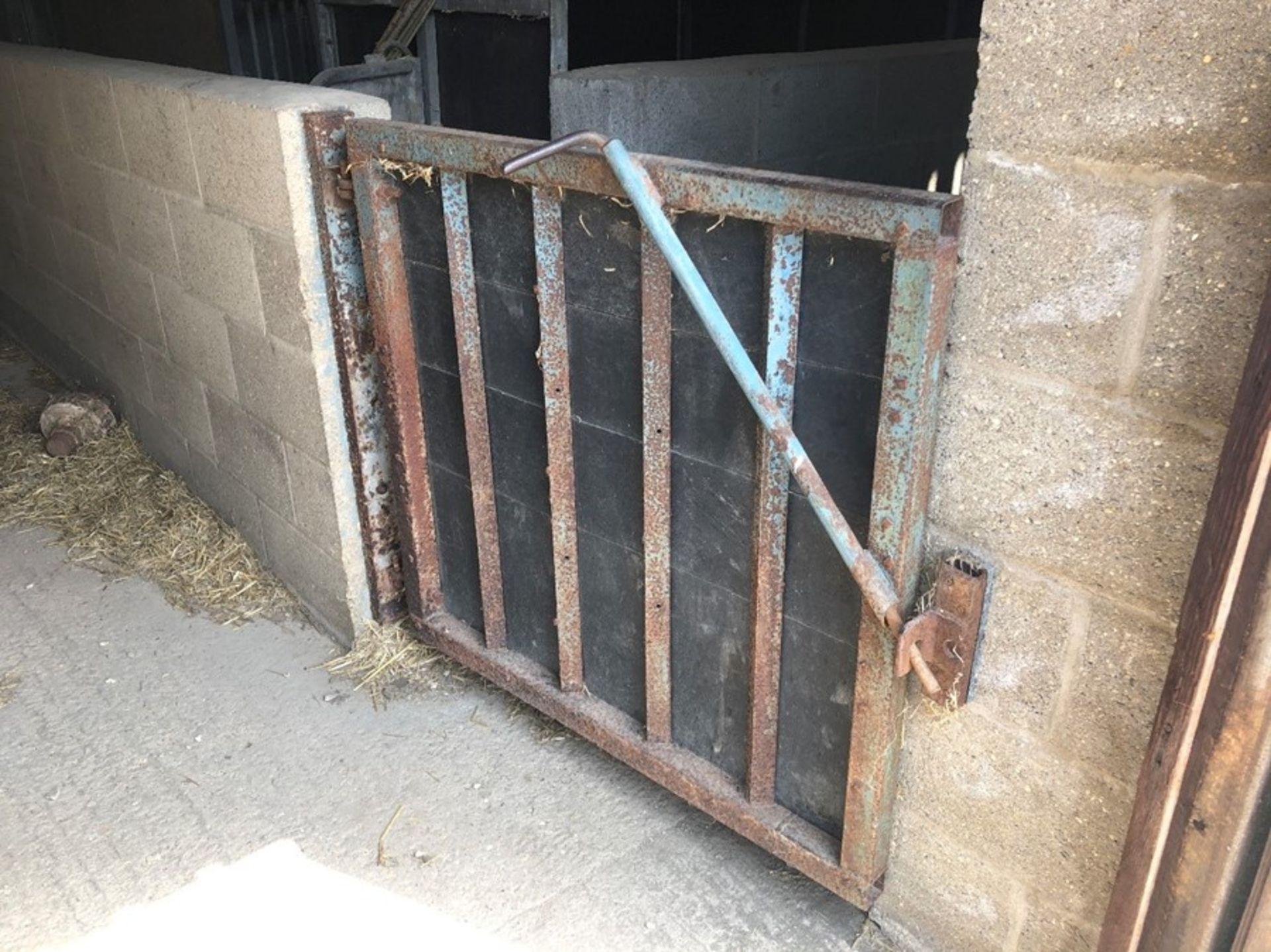 Box section short livestock gate