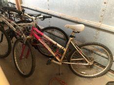 Optima mountain bike