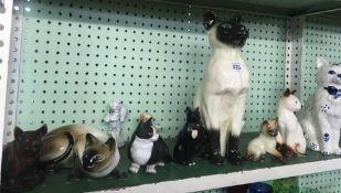 SHELF OF MAINLY CHINA CATS INCL; LARGE BESWICK SIAMESE