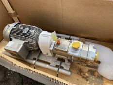 Fristam FDS 2 Twin Screw Pump