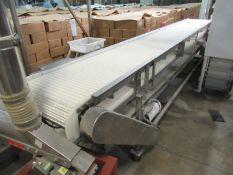 Mobile Transfer Conveyor