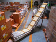 Take Away conveyor