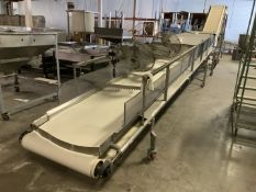 Stainless Chips Cooling Conveyor