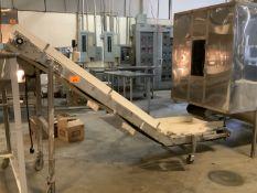 Stainless Transfer Conveyor