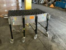 Skatewheel Conveyor