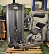 Life FItness Back Extension gym station