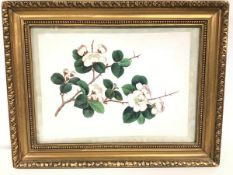 A 19thc Chinese watercolour, handpainted on rice paper, depicting Prunus Blossom (excluding frame:
