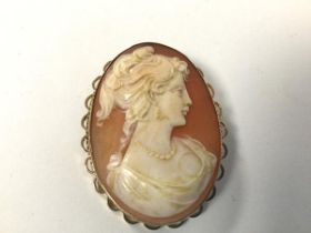 A mid 19thc shell cameo depicting a Female Figure, on 9ct gold mount (4cm)