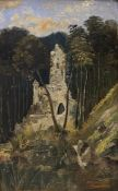 C. Diem,  Verwunschene   Burgruine  am   Waldteich