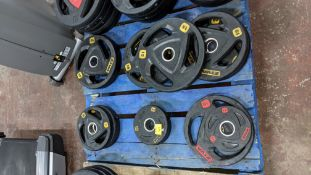 Quantity of Ziva weighted plates in 2 different colour schemes - in total this lot comprises 4 off 2