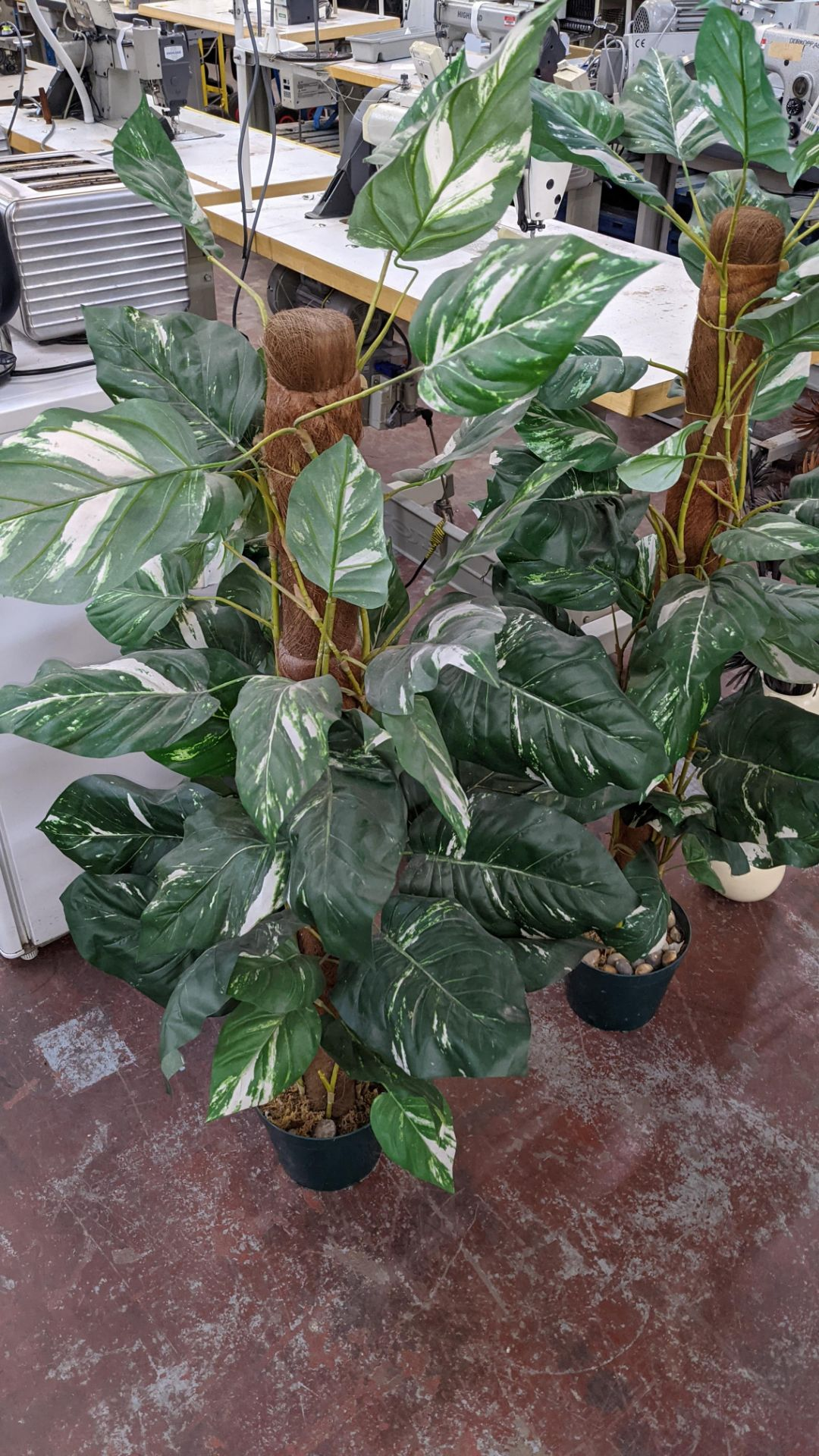 4 off artificial plant displays each including a pot - Image 8 of 8