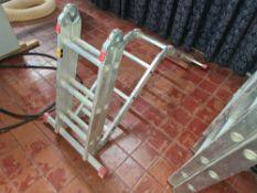 Flexi-Plus multi-adjustable ladders