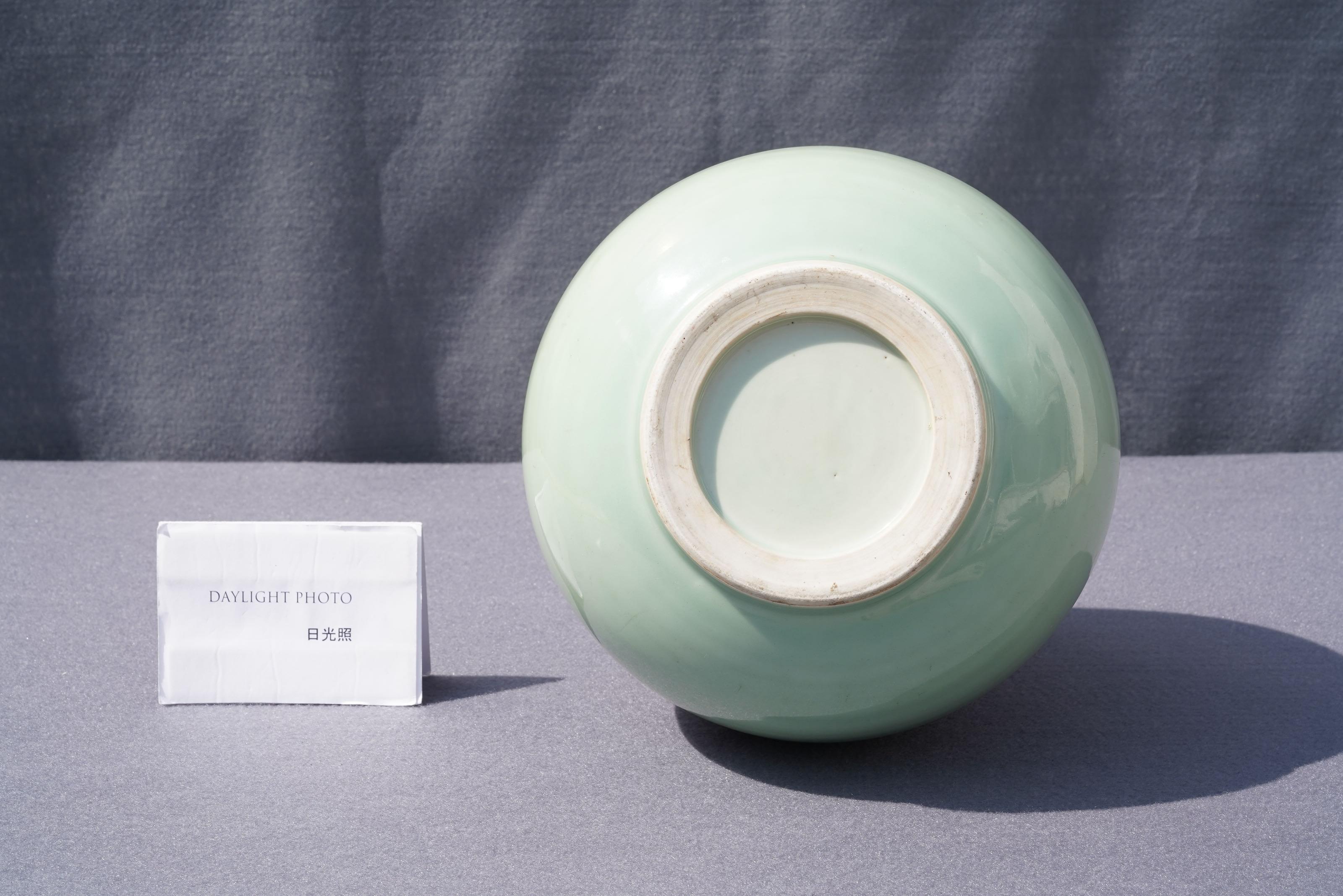 A Chinese copper-red celadon-ground 'dragon' vase, Kangxi - Image 12 of 13