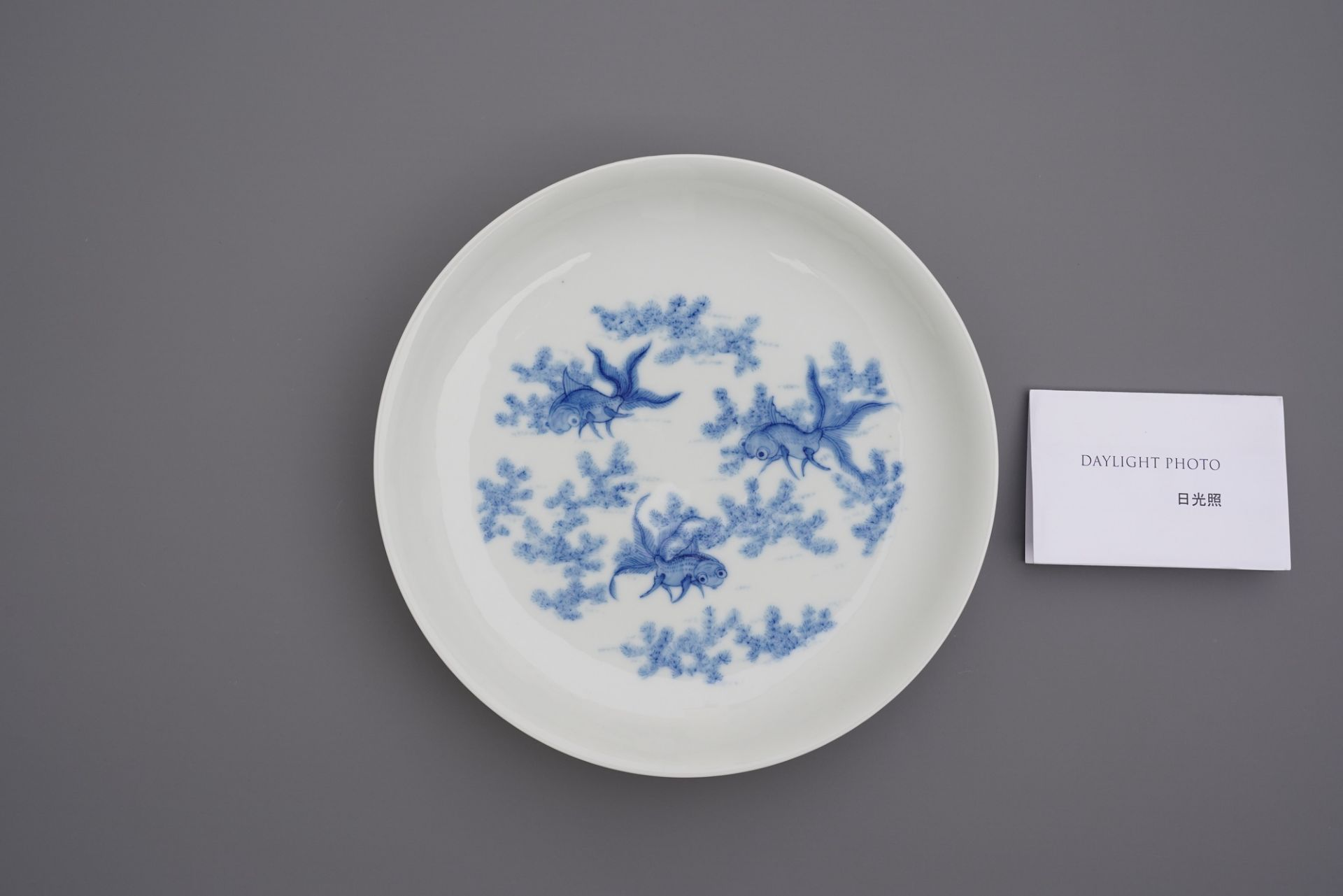 A Chinese blue and white 'goldfish' plate, Daoguang mark, Republic - Image 3 of 4