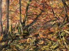 DAVID GOULD mixed media Entitled 'Woods near Edwardsville' 78cm x 63cm dark pine frame