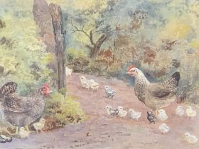 UNSIGNED watercolour - poultry with young, 17.5 x 24cms