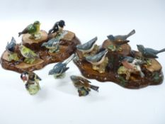 BESWICK GARDEN BIRDS COLLECTION (13) with accompanying plinths (2)