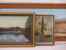 MODERN OILS ON BOARD (3) - C W JOHNSON - river scene, 29 x 39cms, WALSH - 'Grasmere', 29 x 39cms and