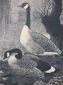 CHARLES FREDERICK TUNNICLIFFE limited edition print 17/50 titled - 'Canadas in Cheshire 1939', 33