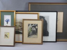 ANTIQUE PRINTS & WATERCOLOURS (6) including an unattributed watercolour titled - T. Dove in May, 6 x