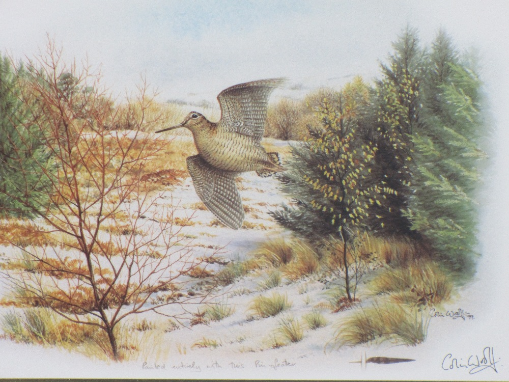 COLIN WOOLF limited edition and other framed prints (3) - a barn owl standing on the gate of the Old - Image 6 of 6