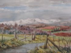 FAWKES 1966 watercolour - country lane and gate with snowcapped hills to the background, signed