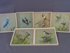 J F LANSDOWNE 1962 prints - set of six, various ornithological scenes, 25 x 25cms AND a very large