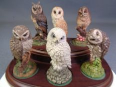 ROYAL DOULTON collection of British Owls, six figures on a wooden plinth with literature, 13.5cms