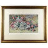 A HOLDING watercolour - May flowers and May flower bug, probably late 19th century, 23 x 36cms