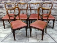 SET OF SIX VICTORIAN WALNUT BUCKLE BACK DINING CHAIRS with scroll