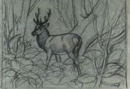CHARLES FREDERICK TUNNICLIFFE OBE RA preliminary drawing in charcoal - stag in woodland, signed,