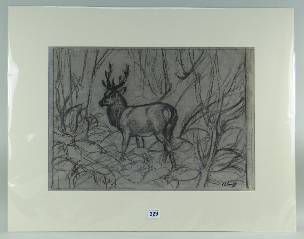 CHARLES FREDERICK TUNNICLIFFE OBE RA preliminary drawing in charcoal - stag in woodland, signed, - Image 2 of 2