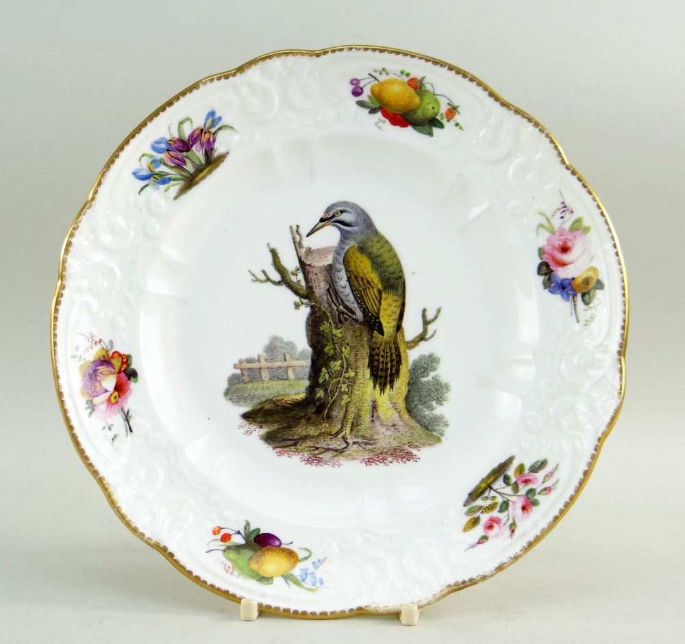 A FINE SWANSEA LONDON DECORATED PORCELAIN PLATE of small size and having a moulded border with c-