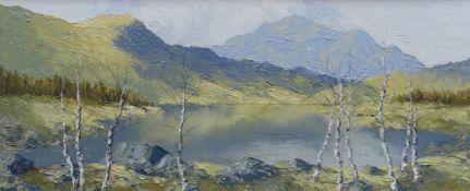 CHARLES WYATT WARREN oil on board - Llyn Gwynant with silver birch trees, signed, 23 x 54cms