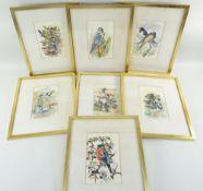 CHARLES FREDERICK TUNNICLIFFE OBE RA (1901-1979) seven watercolour studies of British birds -