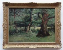 JOHN CUTHBERT SALMON RBA RCA oil on canvas - woodland with grazing cows, signed, 44 x 60cms