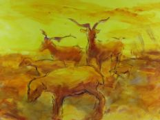 TOM NASH acrylic - Carmargue cattle in orange and yellow, signed, 36 x 48cms Provenance: directly