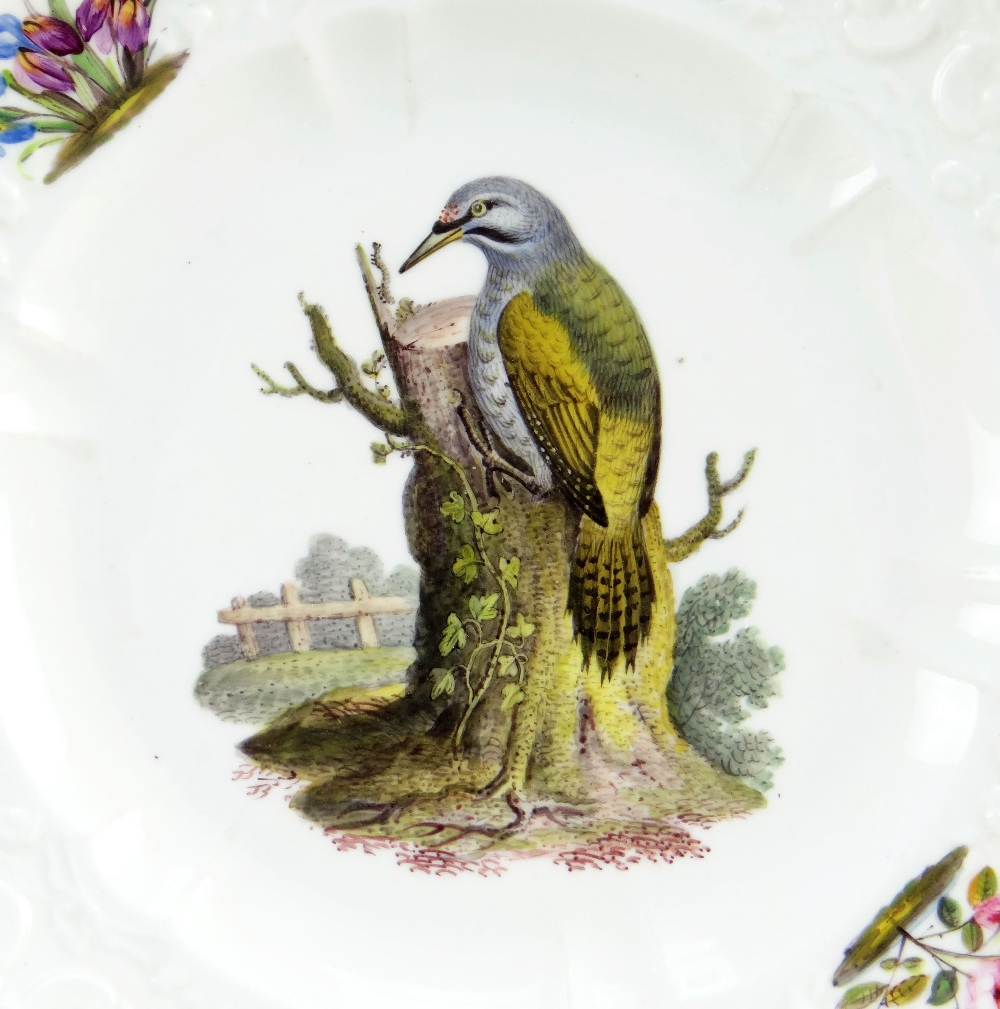 A FINE SWANSEA LONDON DECORATED PORCELAIN PLATE of small size and having a moulded border with c- - Image 2 of 2