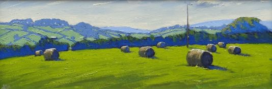 THOMAS HASKETT oil on board - landscape with hay bales, entitled verso 'Round Bales near Penrhos',