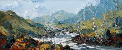CHARLES WYATT WARREN oil on board - entitled verso 'The Glaslyn Near Nant Gwynant', signed, 24 x
