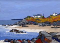 DAVID BARNES oil on canvas board - Ynys Mon with whitewashed cottages on cliff tops, entitled
